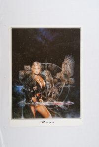 Royo poster nr 8-0